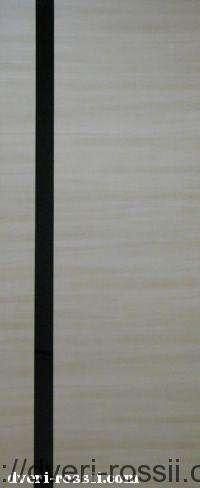 dveri-omis-04