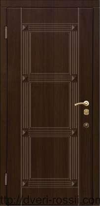 металлические двери в цвете венге рисунок 76