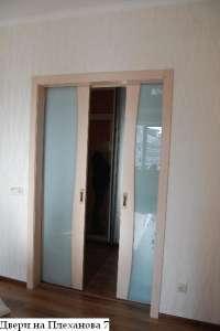 Двери в зал раздвижные