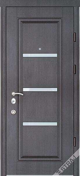 Двери страж-067985931