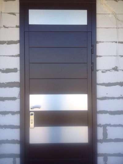 Входные двери в дом Багира Премьер
