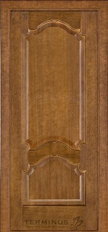 Двери Терминус мод -08 пг дуб темный
