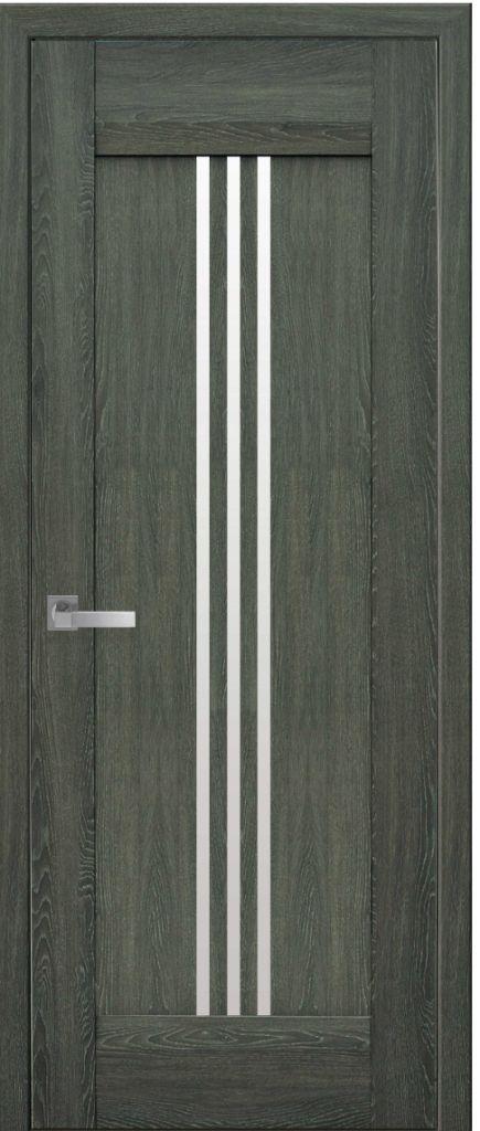 Межкомнатные двери Race дуб графит